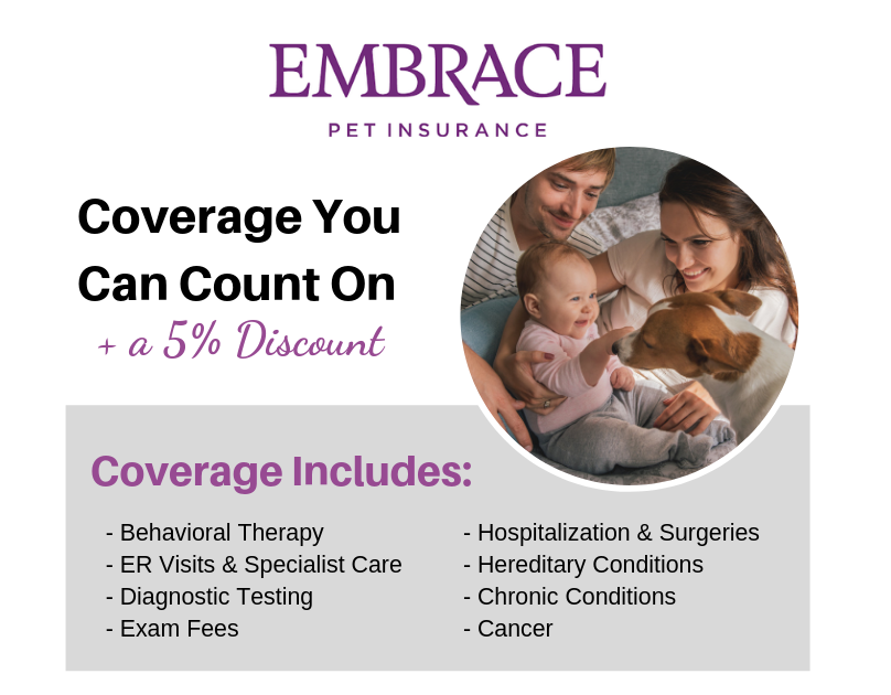 Embrace Coverage